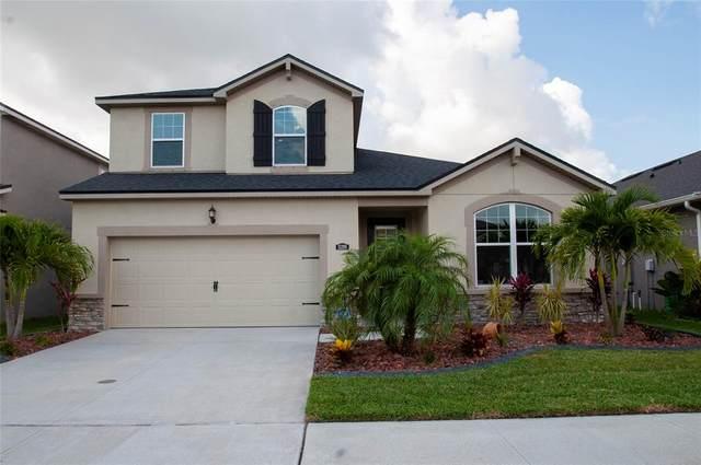 13209 Orca Sound Drive, Riverview, FL 33579 (MLS #T3305387) :: Premier Home Experts