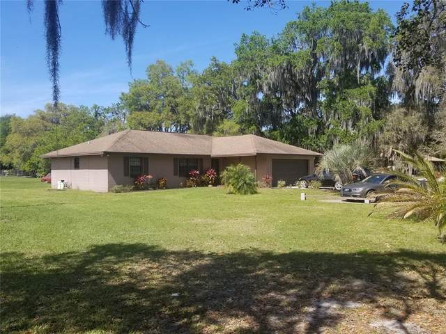 5303 Joe King Road, Plant City, FL 33567 (MLS #T3305390) :: Armel Real Estate