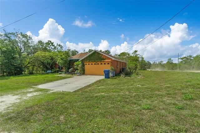 12286 Snowy Egret Avenue, Weeki Wachee, FL 34614 (MLS #T3305400) :: The Kardosh Team