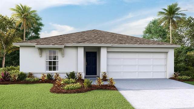 13331 Golden Lime Avenue, Spring Hill, FL 34609 (MLS #T3305423) :: Rabell Realty Group