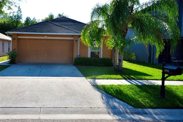 2946 Mingo Drive, Land O Lakes, FL 34638 (MLS #T3305429) :: Premier Home Experts