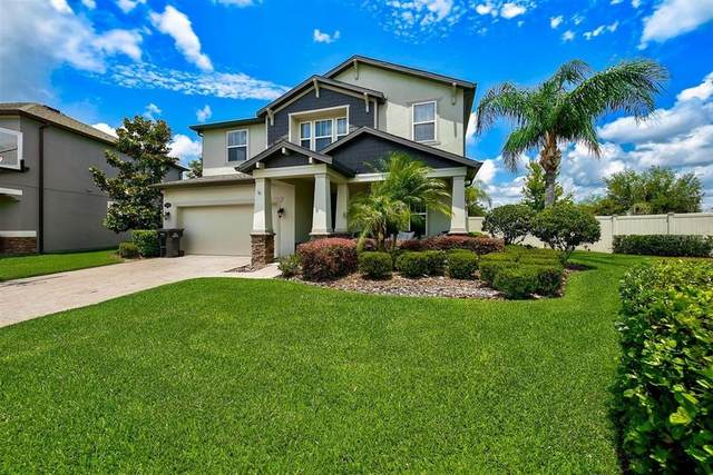 1669 Feather Grass Loop, Lutz, FL 33558 (MLS #T3305446) :: Premier Home Experts