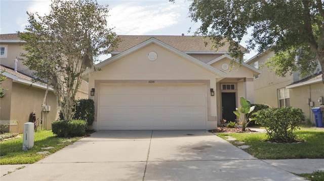 10341 Avelar Ridge Drive, Riverview, FL 33578 (MLS #T3305452) :: Premier Home Experts