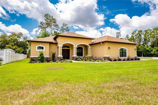 13401 Short Court, Spring Hill, FL 34609 (MLS #T3305468) :: Lockhart & Walseth Team, Realtors