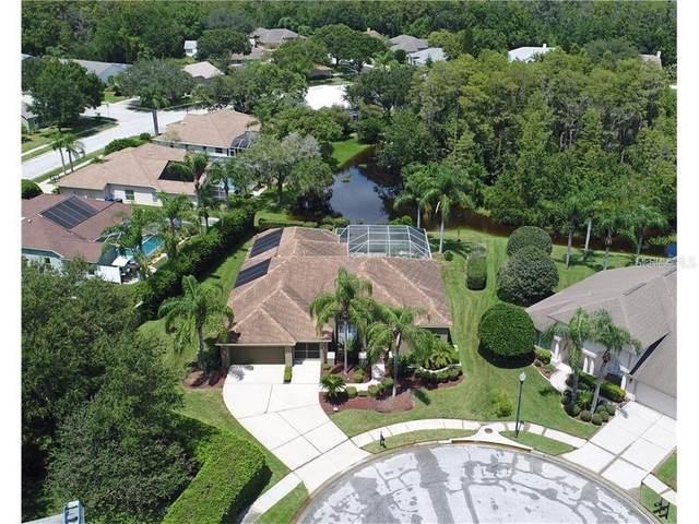 8341 Tannamera Place, Trinity, FL 34655 (MLS #T3305470) :: GO Realty