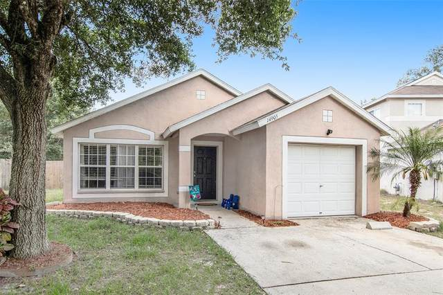 14905 Stag Woods Circle, Lutz, FL 33559 (MLS #T3305474) :: GO Realty
