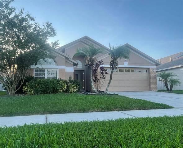 1243 Atticus Court, Wesley Chapel, FL 33543 (MLS #T3305486) :: Premier Home Experts