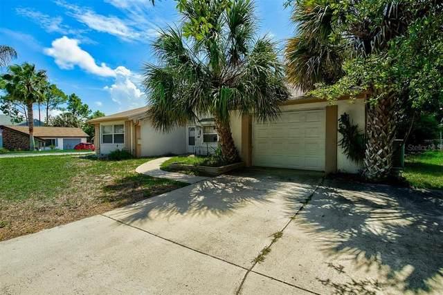 12203 Bear Trap Lane, Hudson, FL 34667 (MLS #T3305502) :: Premier Home Experts