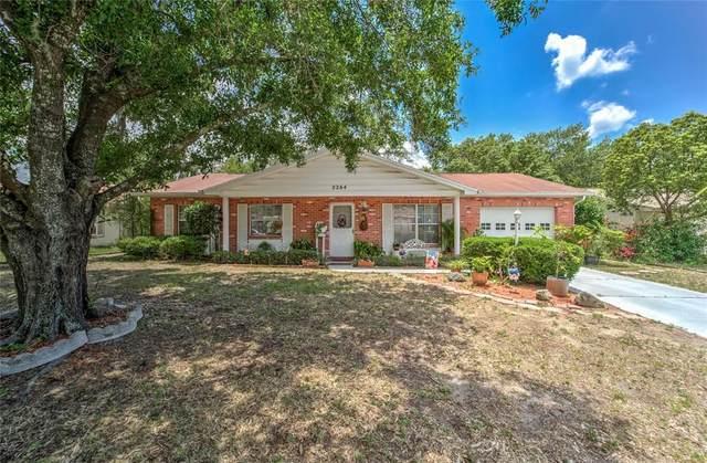 2264 Village Court, Brandon, FL 33511 (MLS #T3305543) :: Premier Home Experts