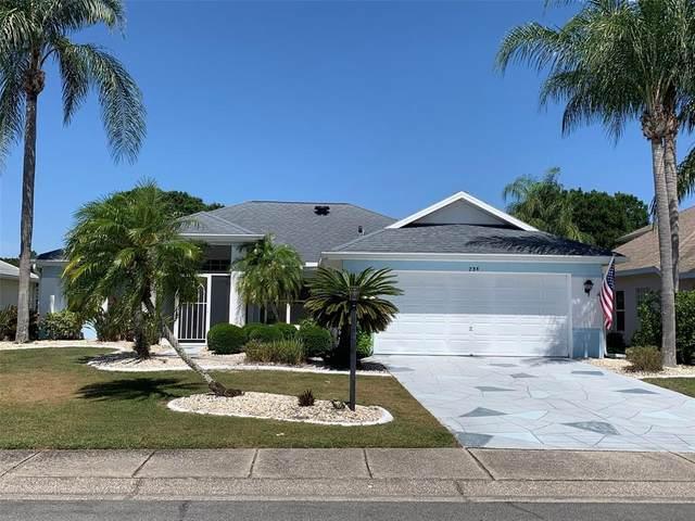 734 Winterbrooke Way, Sun City Center, FL 33573 (MLS #T3305545) :: CENTURY 21 OneBlue