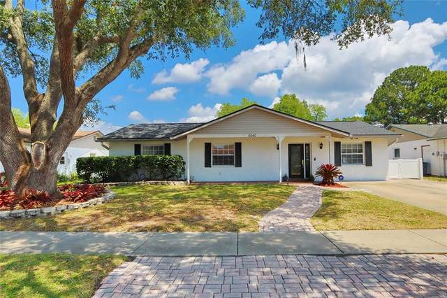 6640 Winding Oak Drive, Tampa, FL 33625 (MLS #T3305554) :: Premier Home Experts
