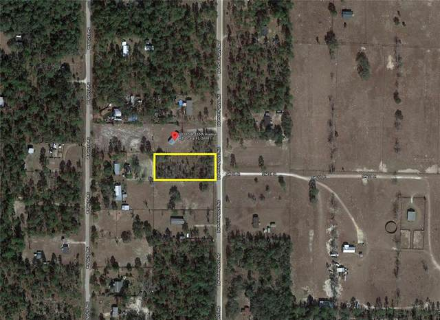 TBD Sw 165Th Ave Road, Ocala, FL 34481 (MLS #T3305601) :: Bustamante Real Estate