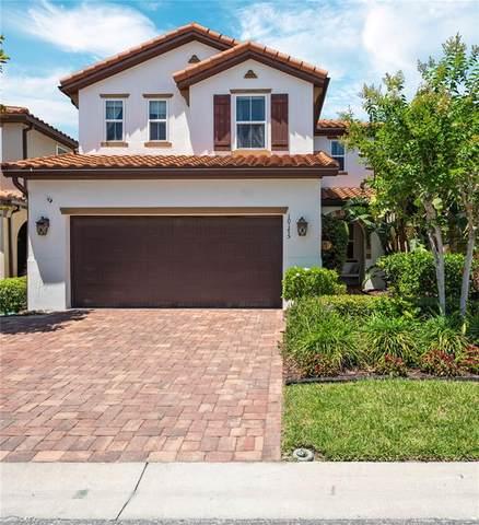 10175 Grand Oak Circle, Madeira Beach, FL 33708 (MLS #T3305620) :: Frankenstein Home Team