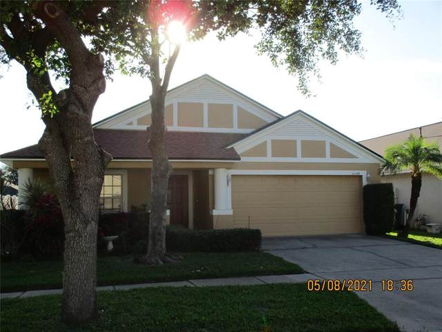 11149 Rodeo Lane, Riverview, FL 33579 (MLS #T3305661) :: Expert Advisors Group