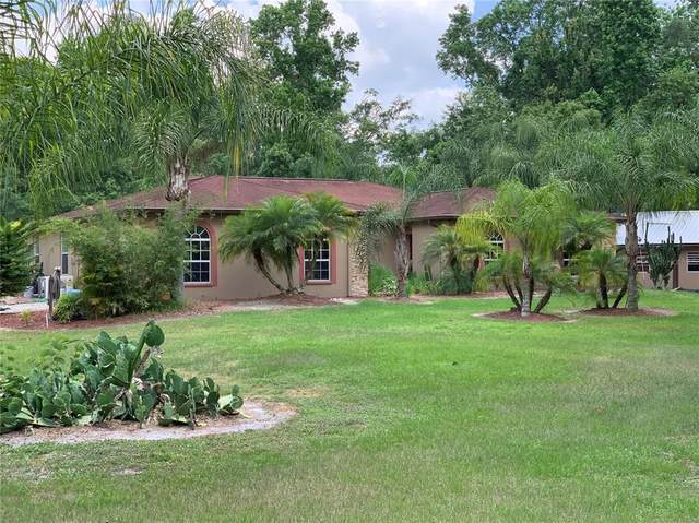 Land O Lakes, FL 34639 :: Southern Associates Realty LLC