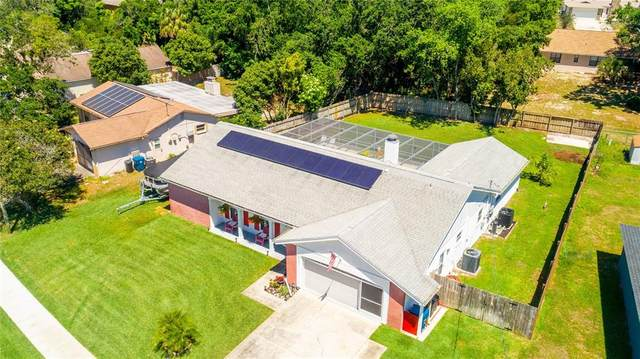 6167 Applegate Drive, Spring Hill, FL 34606 (MLS #T3305677) :: Armel Real Estate