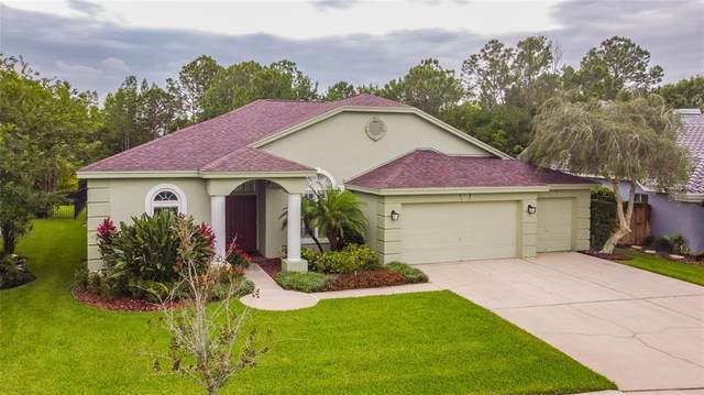 9605 Woodbay Drive, Tampa, FL 33626 (MLS #T3305681) :: Delgado Home Team at Keller Williams