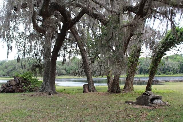 36630 Sunshine Road, Zephyrhills, FL 33541 (MLS #T3305685) :: Premier Home Experts