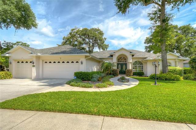 2408 Valrico Forest Drive, Valrico, FL 33594 (MLS #T3305707) :: The Robertson Real Estate Group