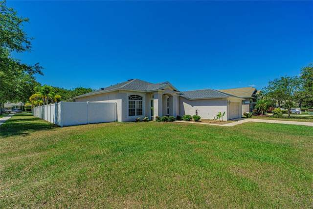 1949 Samantha Lane, Valrico, FL 33594 (MLS #T3305748) :: Griffin Group