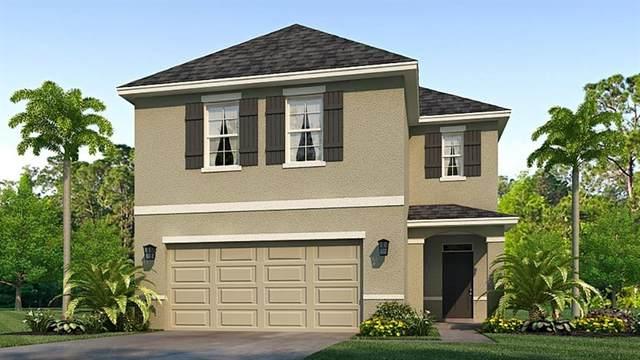 7591 Cypress Walk Drive, New Port Richey, FL 34655 (MLS #T3305750) :: Globalwide Realty