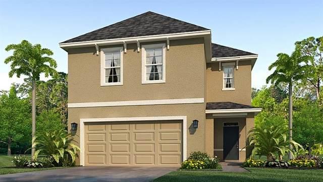 7605 Cypress Walk Drive, New Port Richey, FL 34655 (MLS #T3305752) :: Globalwide Realty