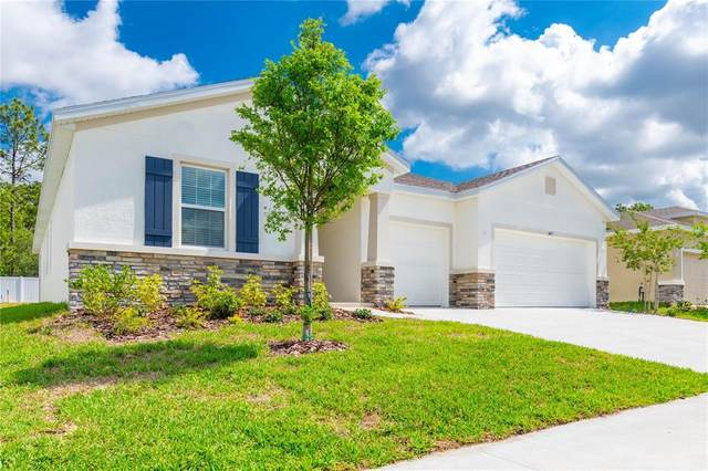 3457 Autumn Amber Drive, Spring Hill, FL 34609 (MLS #T3305757) :: Globalwide Realty