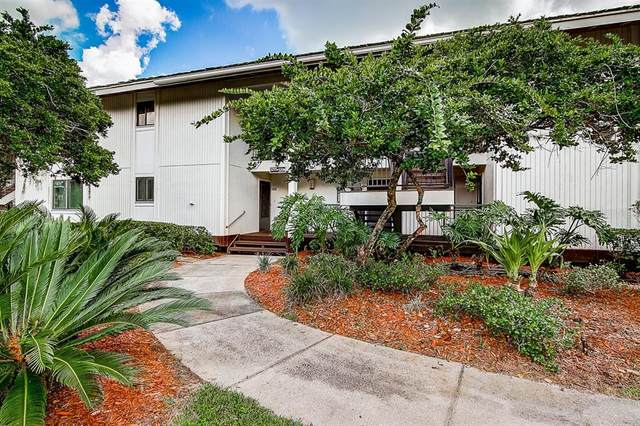 29200 Bay Hollow Drive #3294, Wesley Chapel, FL 33543 (MLS #T3305779) :: Sarasota Property Group at NextHome Excellence