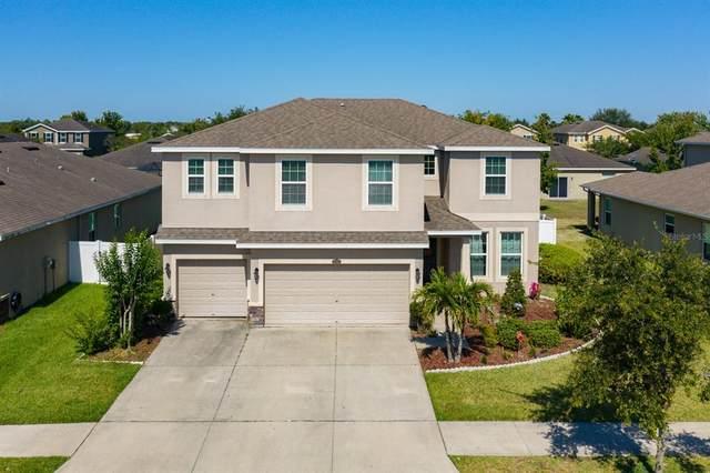 12317 Fairlawn Drive, Riverview, FL 33579 (MLS #T3305797) :: Expert Advisors Group