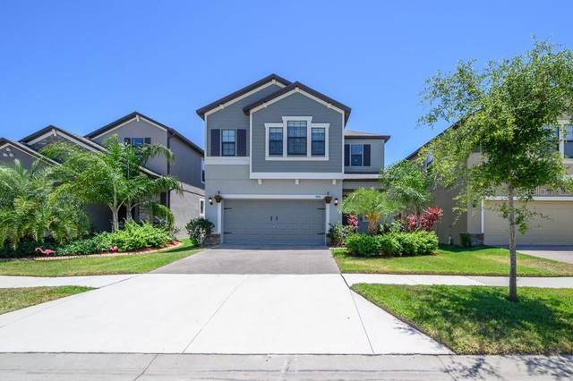 9841 Ivory Drive, Sun City Center, FL 33573 (MLS #T3305810) :: EXIT King Realty