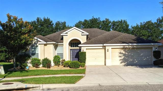 10729 Rockledge View Drive, Riverview, FL 33579 (MLS #T3305816) :: New Home Partners