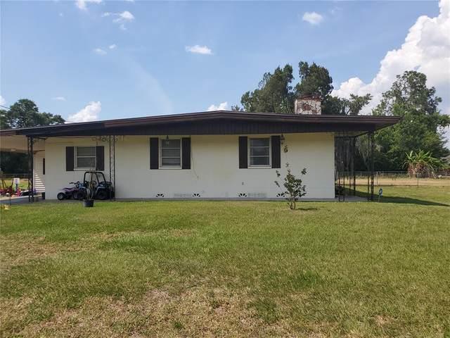 3212 Mott Road, Dover, FL 33527 (MLS #T3305827) :: Sarasota Property Group at NextHome Excellence