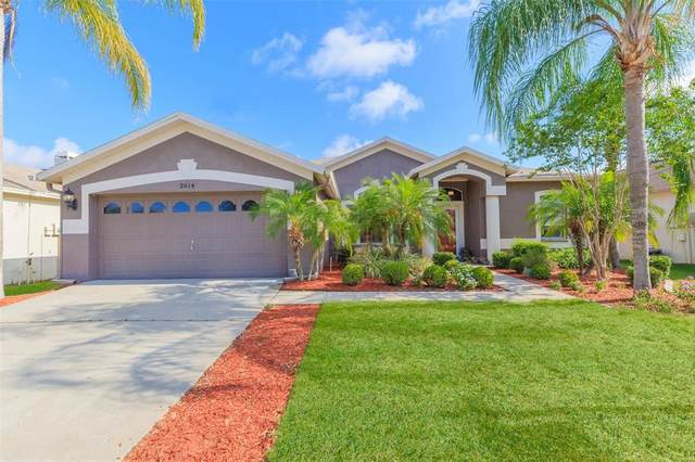2614 Allwood Avenue, Valrico, FL 33596 (MLS #T3305856) :: The Robertson Real Estate Group