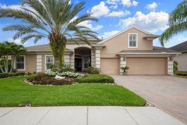 27053 Winged Elm Drive, Wesley Chapel, FL 33544 (MLS #T3305865) :: The Duncan Duo Team