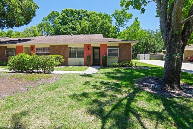 2225 Lark Circle W E, Palm Harbor, FL 34684 (MLS #T3305866) :: Zarghami Group