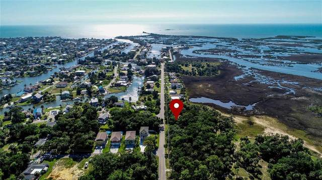 4051 Eagle Nest Drive Lot 27, Hernando Beach, FL 34607 (MLS #T3305868) :: Southern Associates Realty LLC