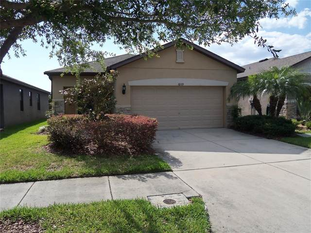 6109 Magnolia Park Boulevard, Riverview, FL 33578 (MLS #T3305877) :: The Duncan Duo Team