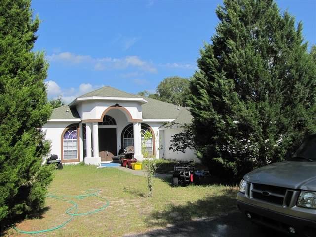 9265 Native Rock Drive, Webster, FL 33597 (MLS #T3305884) :: Sarasota Home Specialists