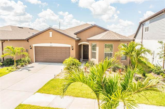 11717 Clare Hill Avenue, Riverview, FL 33579 (MLS #T3305910) :: Visionary Properties Inc