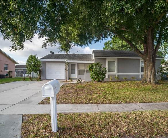 3050 Lecanto Street, Holiday, FL 34691 (MLS #T3305924) :: Rabell Realty Group