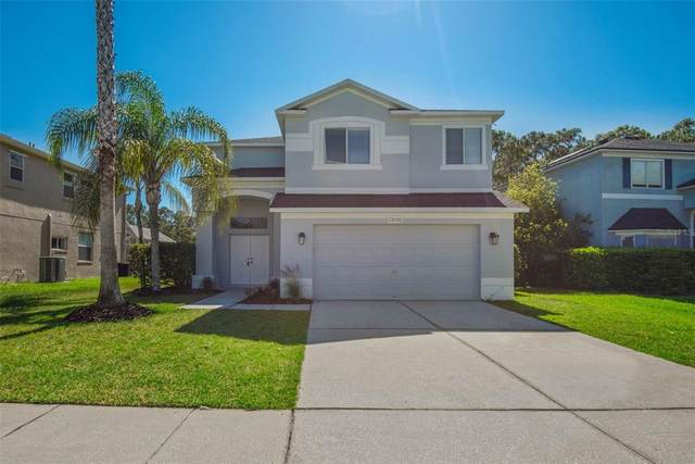 13135 Royal George Avenue, Odessa, FL 33556 (MLS #T3305929) :: The Nathan Bangs Group