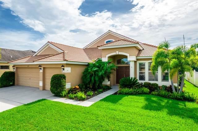 130 Star Shell Drive, Apollo Beach, FL 33572 (MLS #T3305942) :: Team Bohannon