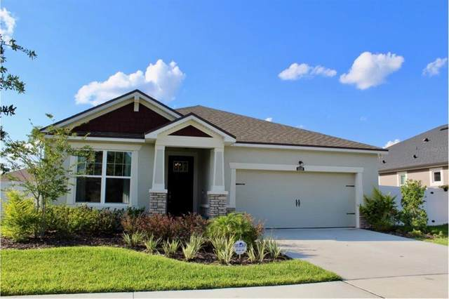 12328 Prairie Valley Lane, Riverview, FL 33579 (MLS #T3305954) :: The Hustle and Heart Group