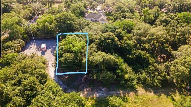 Dr Ml King Jr St N, Safety Harbor, FL 34695 (MLS #T3305975) :: Rabell Realty Group