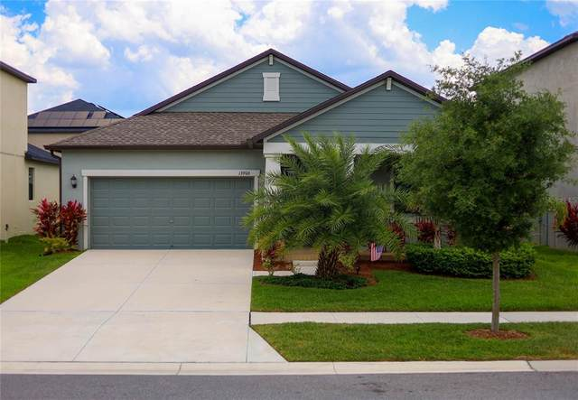 13906 Roseate Tern Lane, Riverview, FL 33579 (MLS #T3305978) :: The Paxton Group