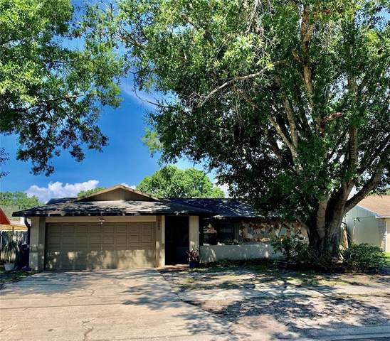 7908 Singing Court Place, Tampa, FL 33615 (MLS #T3305996) :: Premier Home Experts