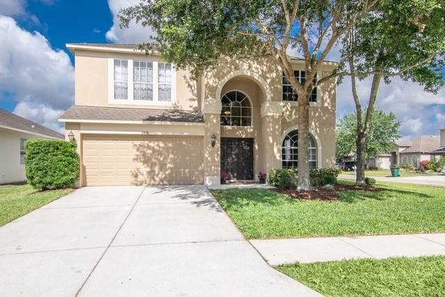 7715 Bulls Head Drive, Wesley Chapel, FL 33545 (MLS #T3306005) :: Griffin Group