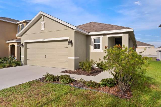 11125 Leland Groves Drive, Riverview, FL 33579 (MLS #T3306010) :: The Robertson Real Estate Group