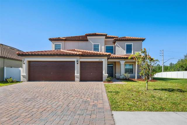 18958 Lutterworth Court, Land O Lakes, FL 34638 (MLS #T3306020) :: Everlane Realty