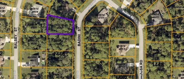 Badini Street, North Port, FL 34286 (MLS #T3306022) :: Kelli and Audrey at RE/MAX Tropical Sands